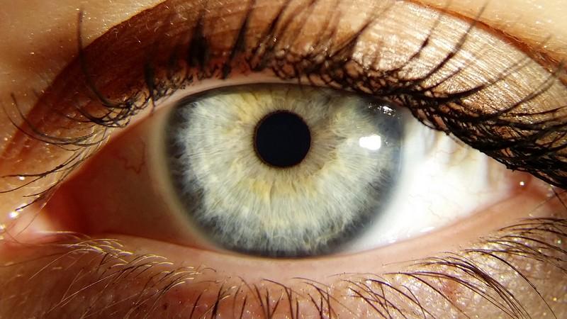 iride occhio